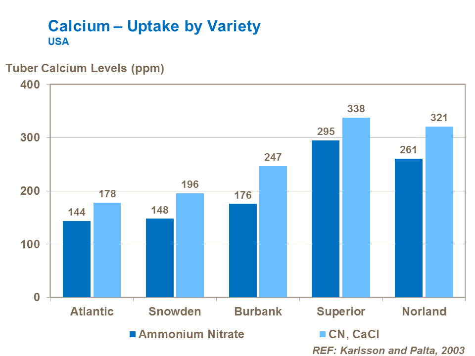 Calcium uptake by potato variety