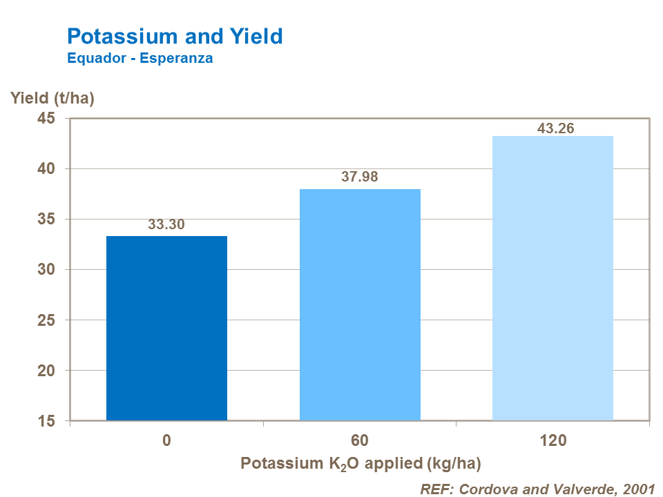 Potassium and potato yield