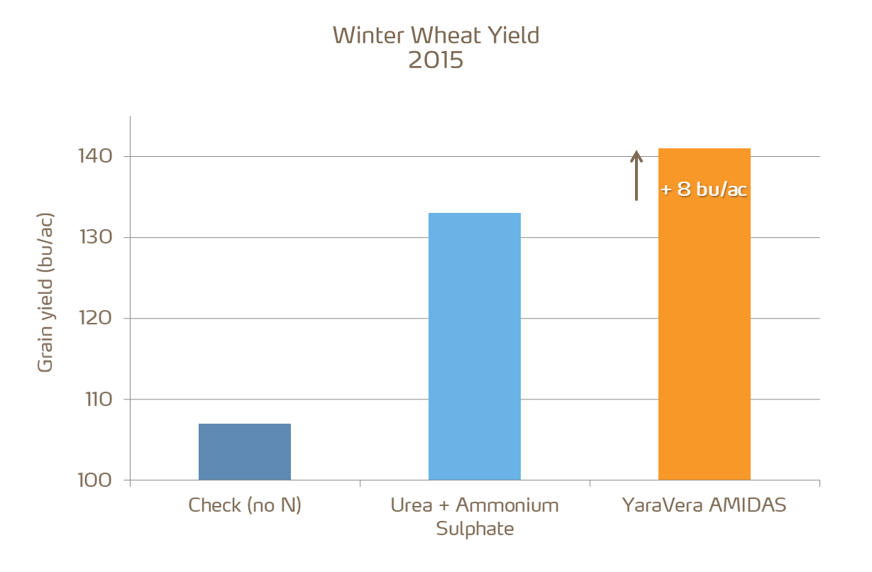 winter wheat yield increases with amidas